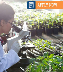 BSc-Hons-in-Biotechnology